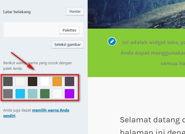 Memilih Warna Latar Belakang Pada WordPress