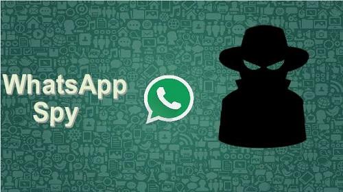 Mengenal Social Spy Whatsapp